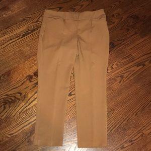 So Slimming Chico's Chestnut Pants